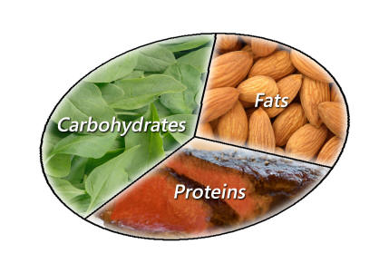 Foods With High Fiber To Carb Ratio