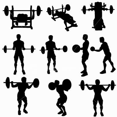 the 2 types of exercise cardio and resistance  mirror